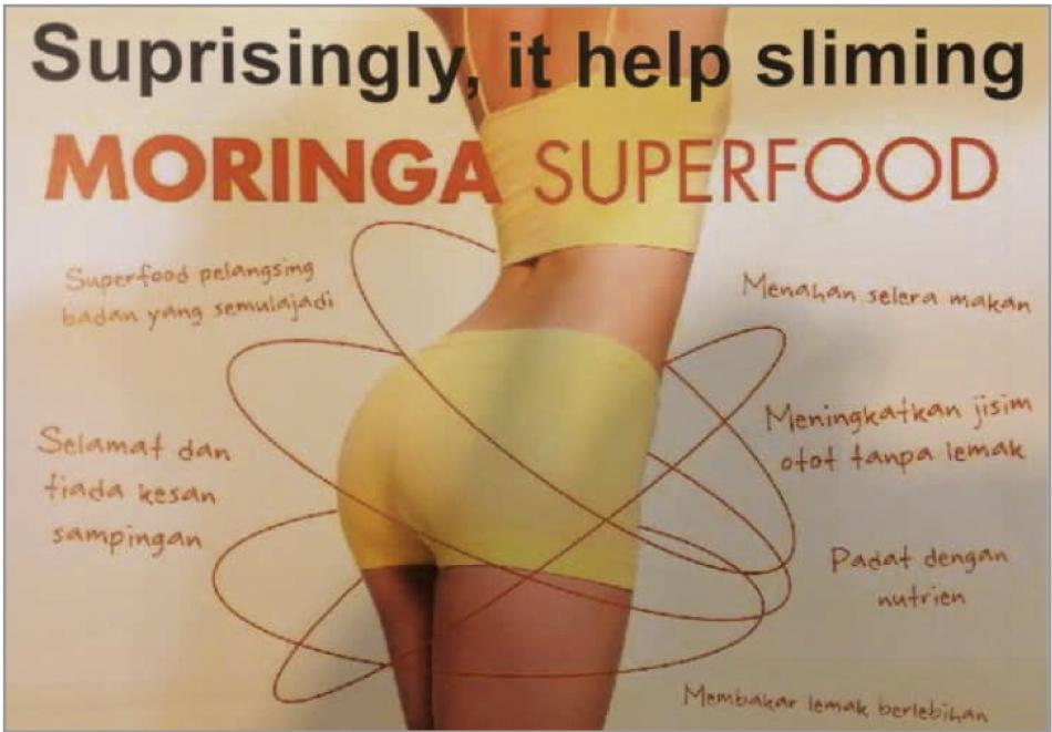 moringa_slimming